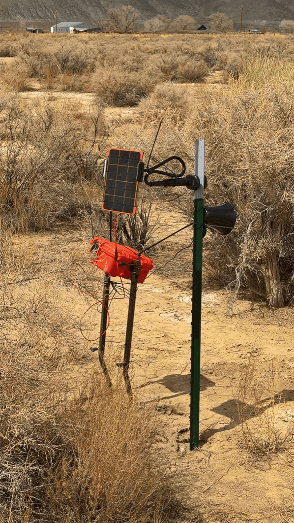 Connected Bird Call installed in the field