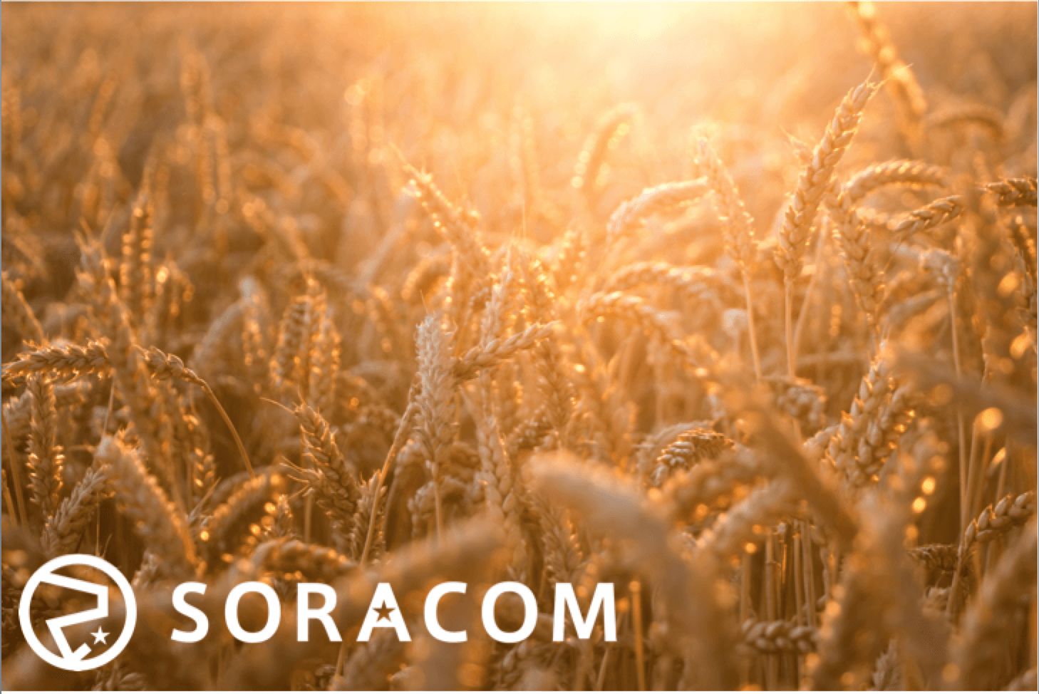 SORACOM Air, SORACOM Beam… What comes next?