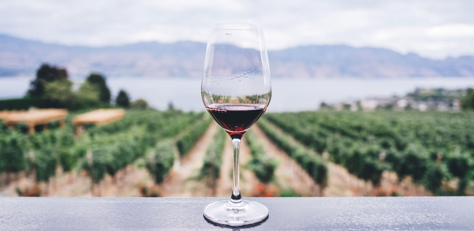 IoT for Wineries