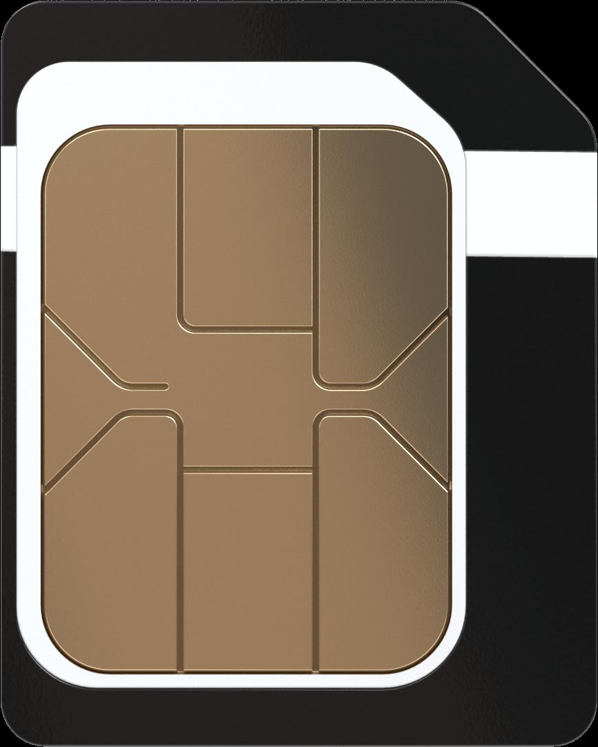 Soracom IoT Micro SIM
