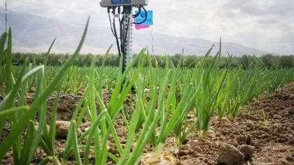 Hortau IoT irrigation